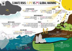 Environment Infographic Credit WWF